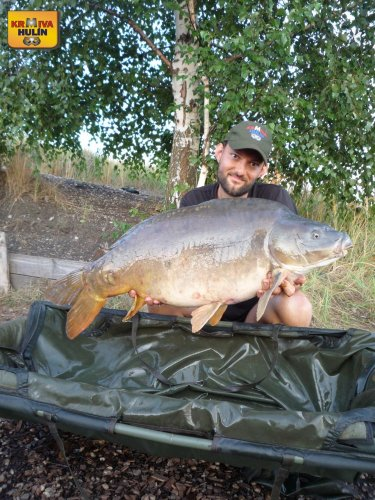 15kg, zig rig pop up ananas