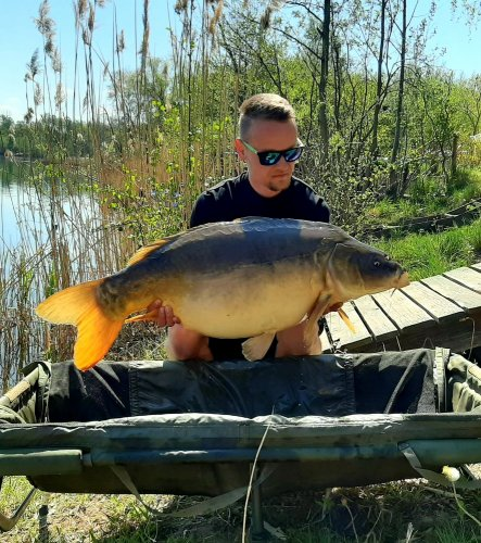 20,3kg, boilies Krill/Oliheň, Pop up Ananas