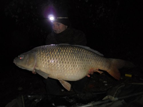 96cm, 18,9kg, Boilies Black and White