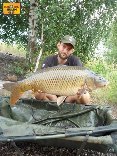 14,8kg, zig rig - pop up ananas