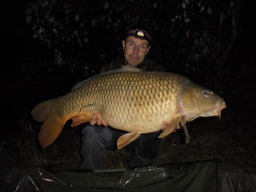 16,8kg, boilies Black and White
