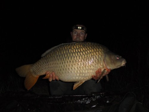 15,4kg, boilies Black and White