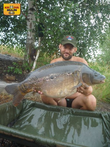 15,3kg, zig rig - pop up ananas