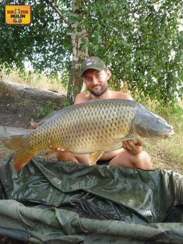 15,5kg, zig rig pop up ananas