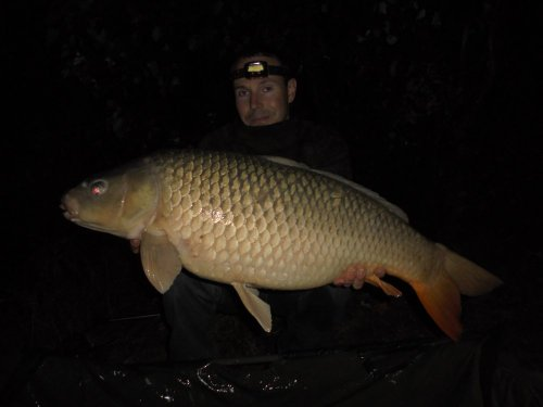 15,2kg, boilies Black and White