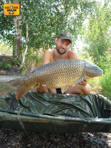 13,9kg, zig rig - pop up ananas