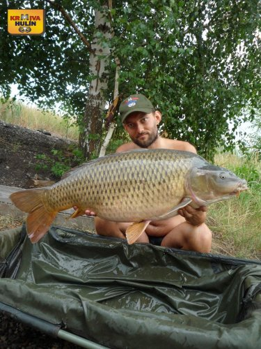 15,8kg, zig rig pop up ananas