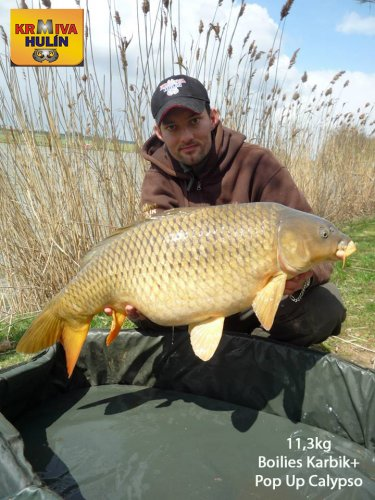 11,3kg, boilies Karibik, pop up Calypso