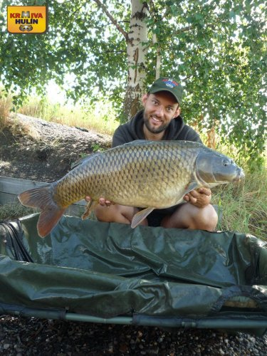 12kg, zig rig - pop up ananas